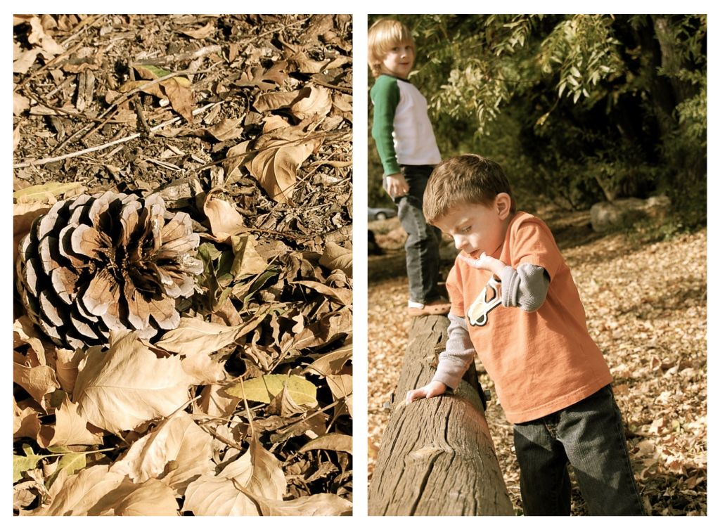 playing-in-the-leaves-1.jpg