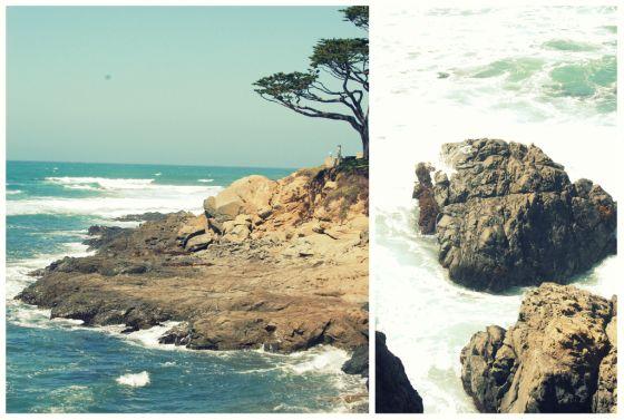 coastline2