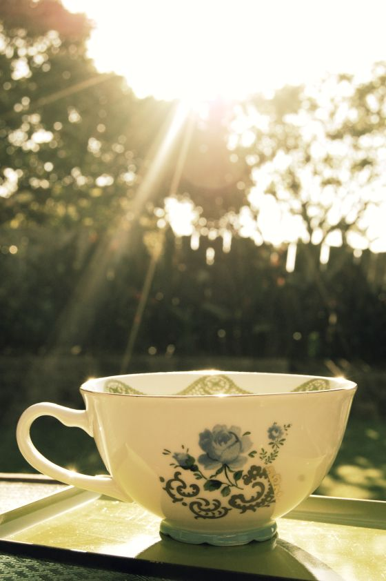 teacup-in-the-sunlight