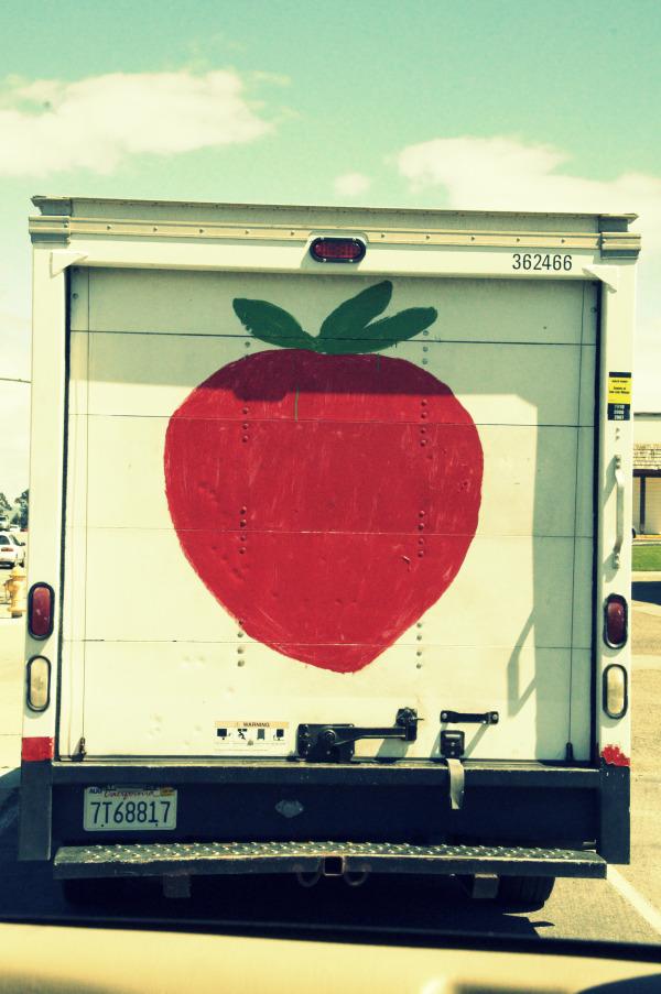 Strawberries in season lisa leonard designs blog for Design food truck online