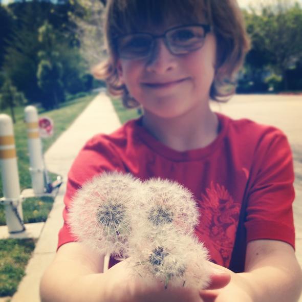 Matthias picked me a bouquet of dandelions at the park Best bouquet ever