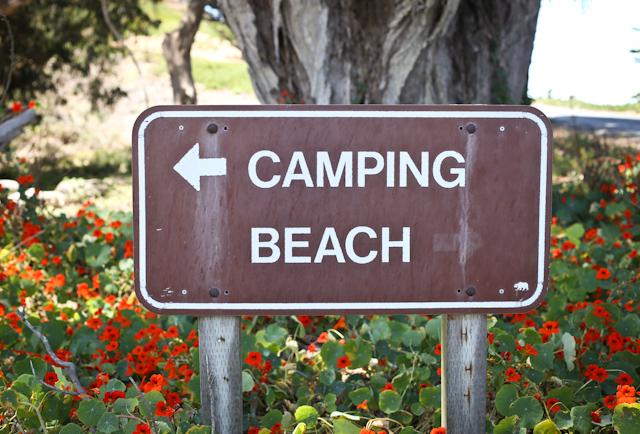 camping sunset beach 2015-19