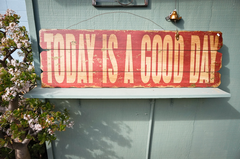 today is a good day lisa leonard-01