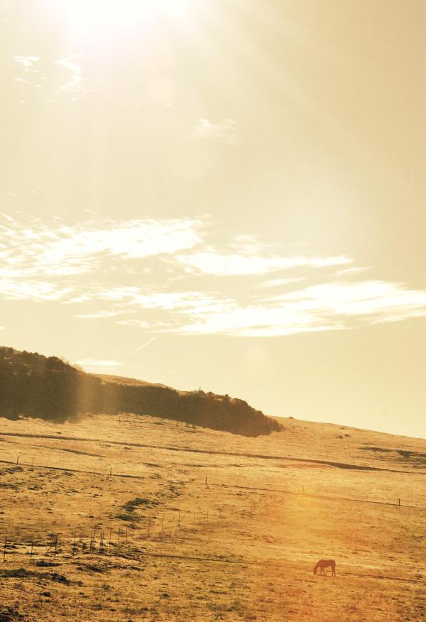 sundaymorn1