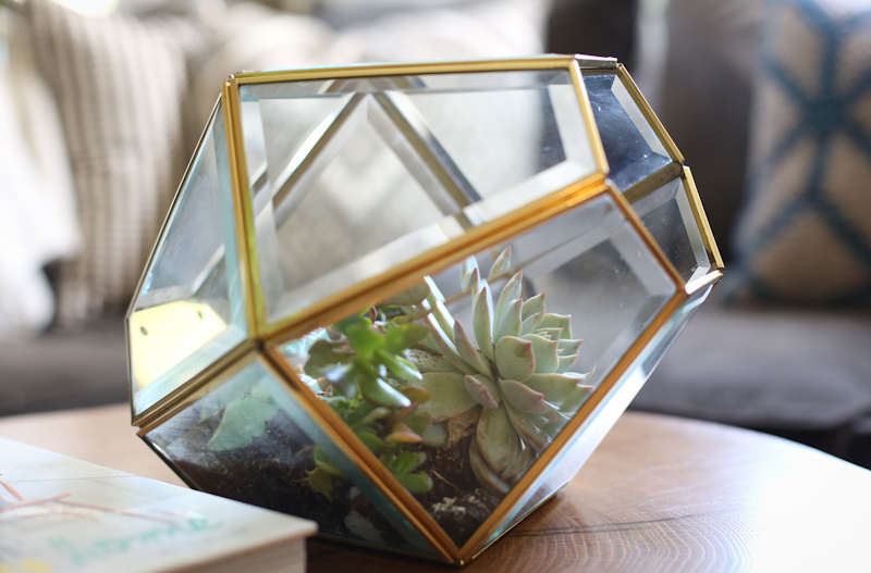 DIY lamp to terrarium lisa leonard-03