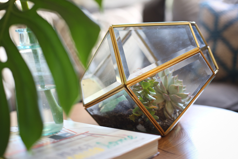 DIY lamp to terrarium lisa leonard-04