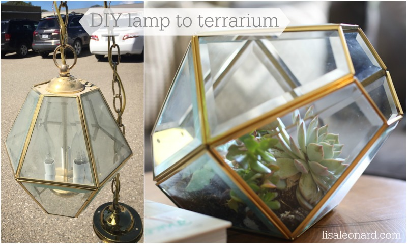 DIY lamp to terrarium2